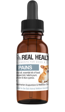 Aches and Pains Oil for Canines