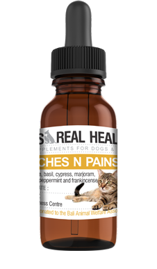 Aches and Pains Oil for Felines