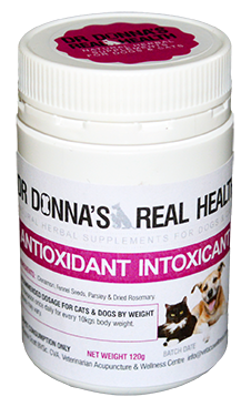 Antioxidant Intoxicant